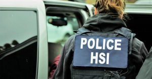 HSI-investigations-surge-over-previous-year