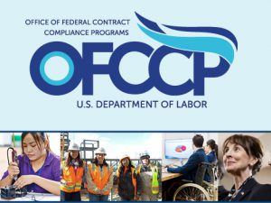 EEOC Pay Data of No Use, Says Federal Contractor Watchdog Agency