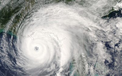 The Relationship Between Natural Disasters and Employment Law